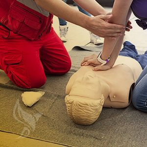 Basic Life Support Training Course